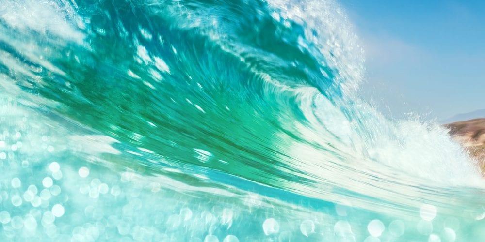 2018 Traditional & Digital Marketing Trends | Blog | Big Marlin Group