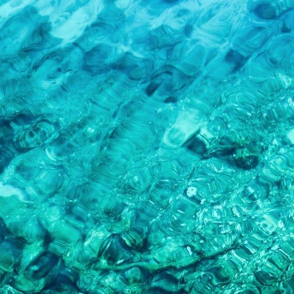 Food Industry Marketing Tips | Blog | Big Marlin Group
